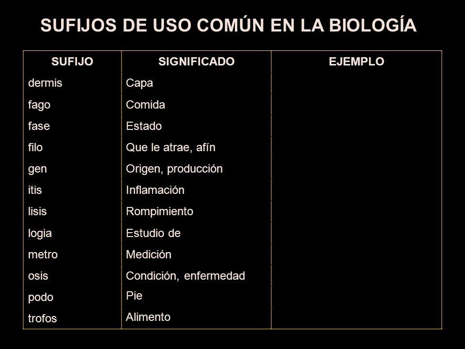 ¿QUÉ ES LA BIOLOGÍA.La biología es una ________ que estudia a los seres vivos.