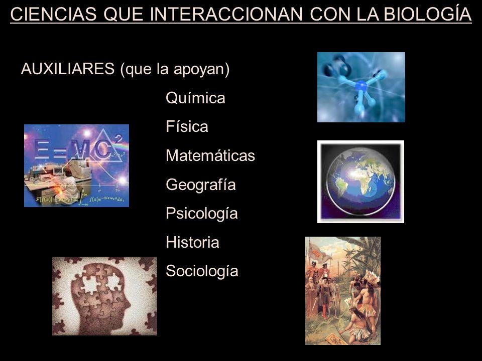 CIENCIAS QUE INTERACCIONAN CON LA BIOLOGÍA RAMAS (que surgieron la biología) Zoología ( )Anatomía ( ) Microbiología ( )Fisiología ( ) Botánica ( )Patología ( ) Bacteriología( )Embriología ( ) Taxonomía ( )Ecología ( ) Citología ( )Genética ( ) Histología ( )Evolución ( ) Organografía ( )