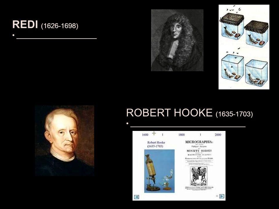 REDI (1626-1698) _____________________ ROBERT HOOKE (1635-1703) ______________________________