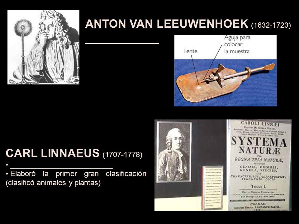 ANTON VAN LEEUWENHOEK (1632-1723) __________________ CARL LINNAEUS (1707-1778) _________________________ Elaboró la primer gran clasificación (clasificó animales y plantas)