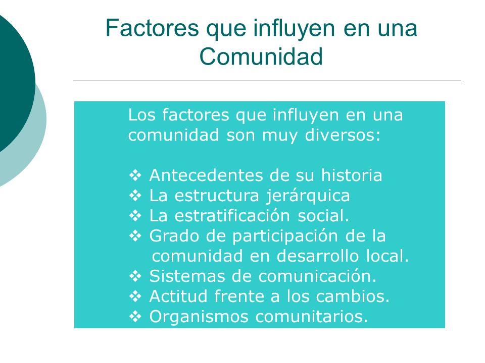 Factores que influyen en una Comunidad Los factores que influyen en una comunidad son muy diversos: Antecedentes de su historia La estructura jerárqui
