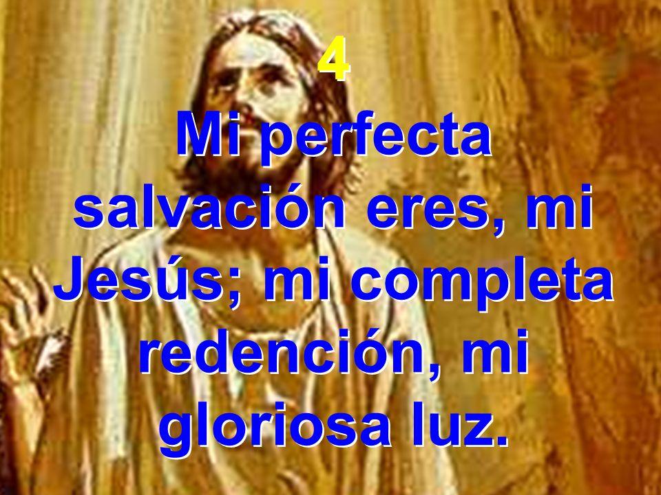 4 Mi perfecta salvación eres, mi Jesús; mi completa redención, mi gloriosa luz. 4 Mi perfecta salvación eres, mi Jesús; mi completa redención, mi glor