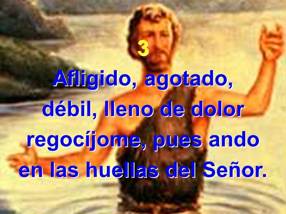 3 Afligido, agotado, débil, lleno de dolor regocíjome, pues ando en las huellas del Señor. 3 Afligido, agotado, débil, lleno de dolor regocíjome, pues
