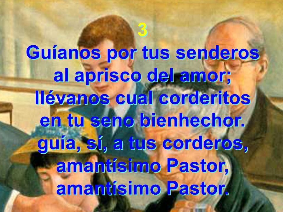 3 Guíanos por tus senderos al aprisco del amor; llévanos cual corderitos en tu seno bienhechor. guía, sí, a tus corderos, amantísimo Pastor, amantísim