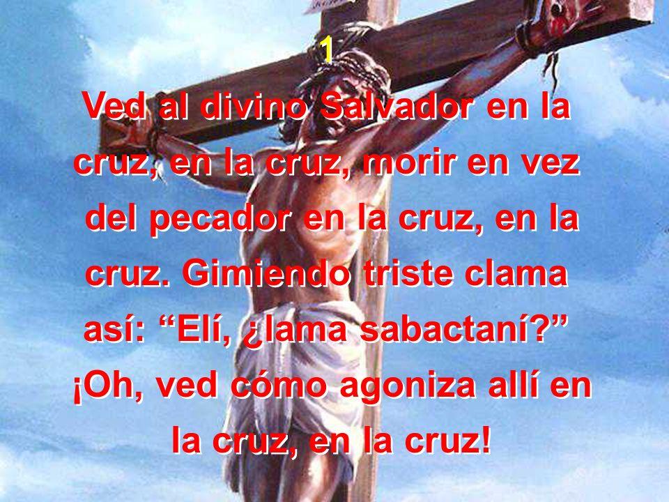 1 Ved al divino Salvador en la cruz, en la cruz, morir en vez del pecador en la cruz, en la cruz. Gimiendo triste clama así: Elí, ¿lama sabactaní? ¡Oh