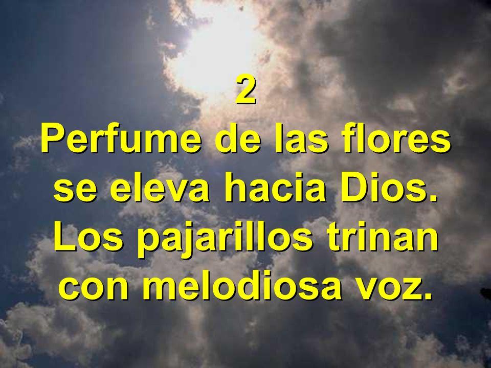 2 Perfume de las flores se eleva hacia Dios. Los pajarillos trinan con melodiosa voz. 2 Perfume de las flores se eleva hacia Dios. Los pajarillos trin