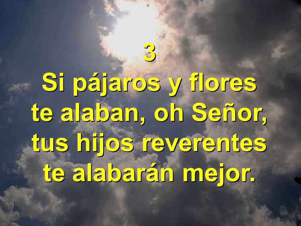3 Si pájaros y flores te alaban, oh Señor, tus hijos reverentes te alabarán mejor. 3 Si pájaros y flores te alaban, oh Señor, tus hijos reverentes te
