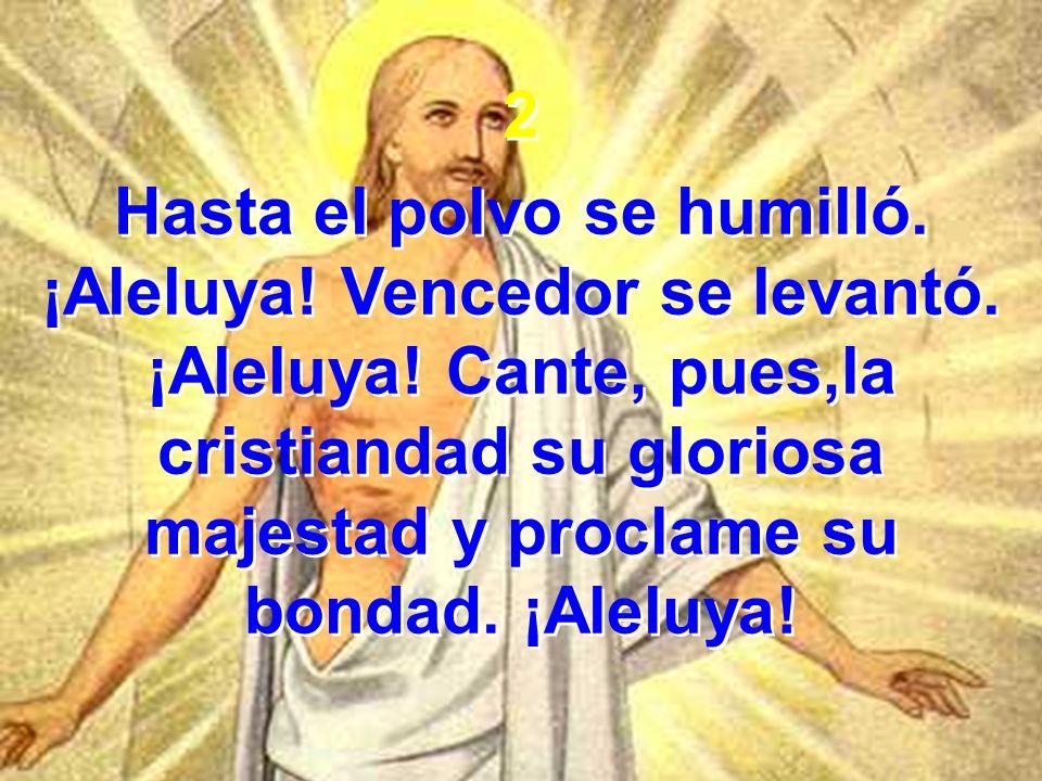 2 Hasta el polvo se humilló. ¡Aleluya! Vencedor se levantó. ¡Aleluya! Cante, pues,la cristiandad su gloriosa majestad y proclame su bondad. ¡Aleluya!