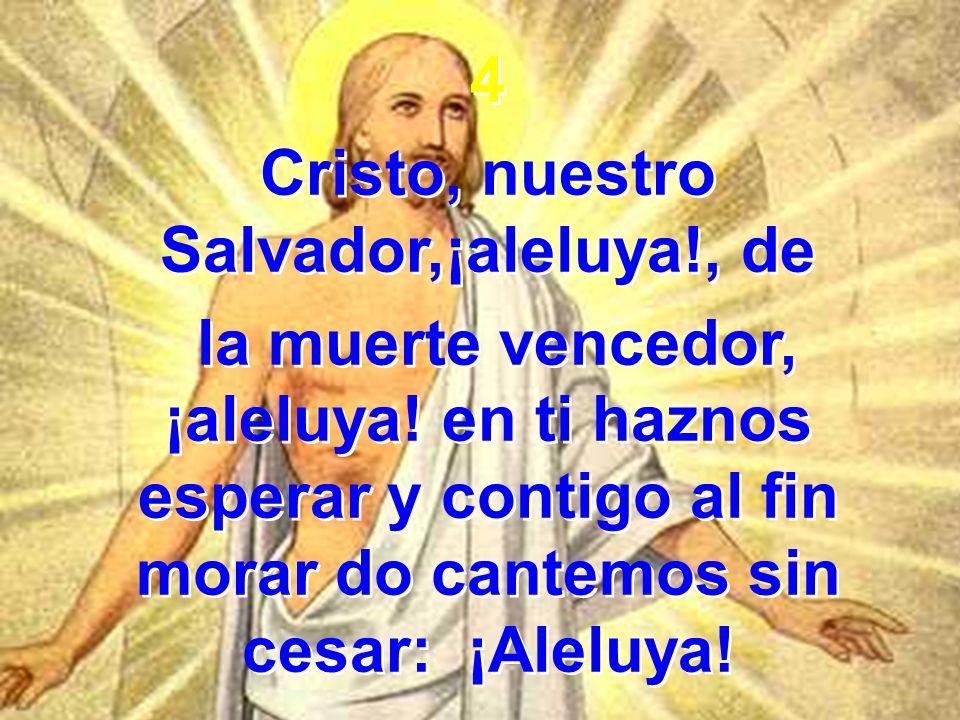 4 Cristo, nuestro Salvador,¡aleluya!, de la muerte vencedor, ¡aleluya! en ti haznos esperar y contigo al fin morar do cantemos sin cesar: ¡Aleluya! 4