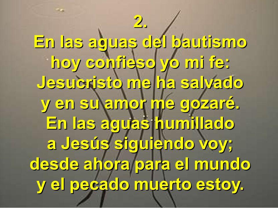 2. En las aguas del bautismo hoy confieso yo mi fe: Jesucristo me ha salvado y en su amor me gozaré. En las aguas humillado a Jesús siguiendo voy; des