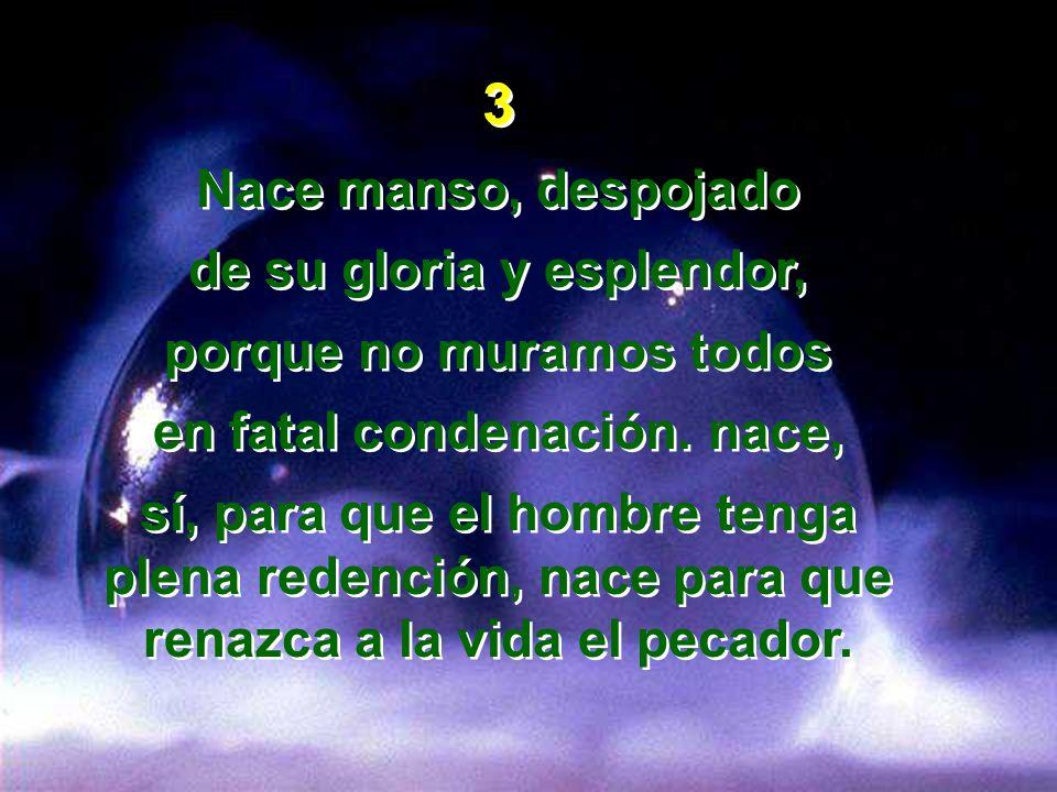 3 Nace manso, despojado de su gloria y esplendor, porque no muramos todos en fatal condenación. nace, sí, para que el hombre tenga plena redención, na