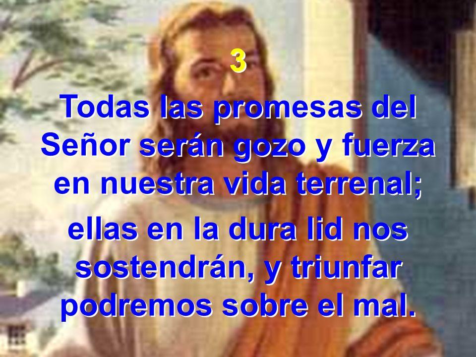 3 Todas las promesas del Señor serán gozo y fuerza en nuestra vida terrenal; ellas en la dura lid nos sostendrán, y triunfar podremos sobre el mal. 3