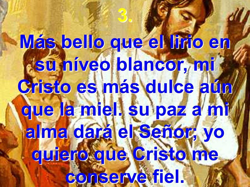3. Más bello que el lirio en su níveo blancor, mi Cristo es más dulce aún que la miel. su paz a mi alma dará el Señor; yo quiero que Cristo me conserv