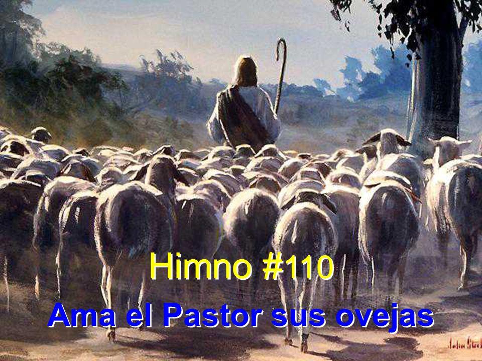 1 Ama el Pastor sus ovejas con un amor paternal; ama el Pastor su rebaño con un amor sin igual.