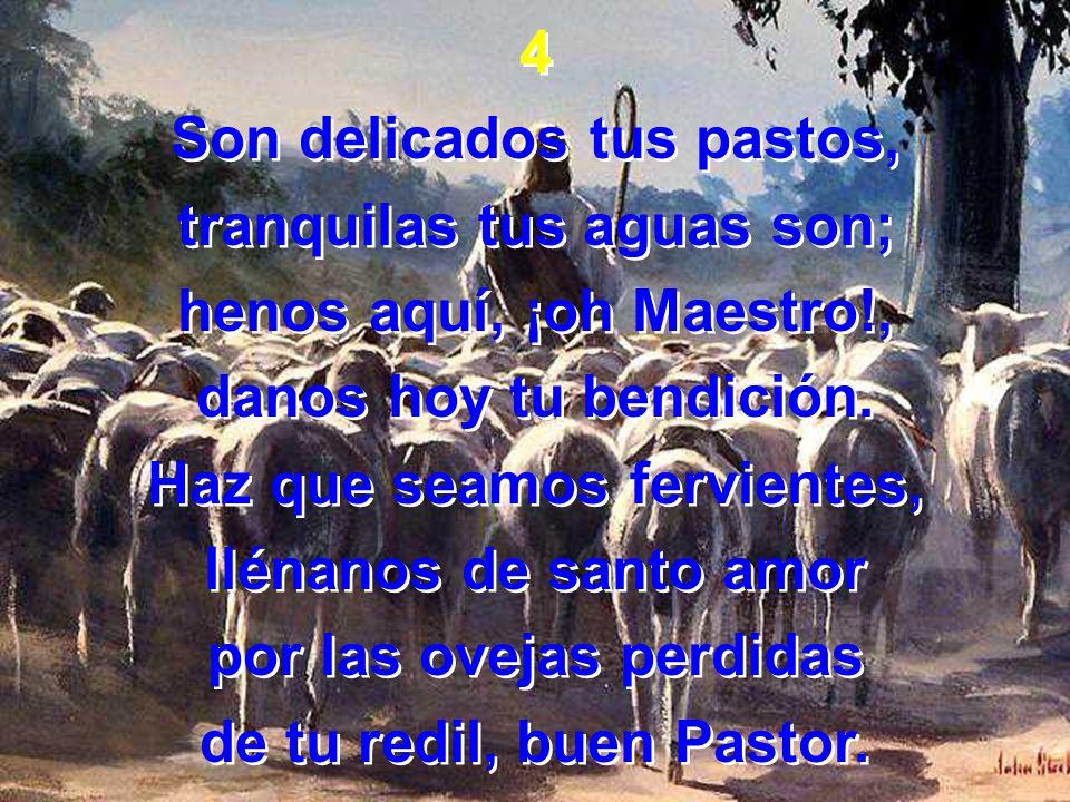 4 Son delicados tus pastos, tranquilas tus aguas son; henos aquí, ¡oh Maestro!, danos hoy tu bendición. Haz que seamos fervientes, llénanos de santo a