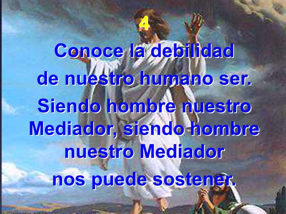 4 Conoce la debilidad de nuestro humano ser. Siendo hombre nuestro Mediador, siendo hombre nuestro Mediador nos puede sostener. 4 Conoce la debilidad