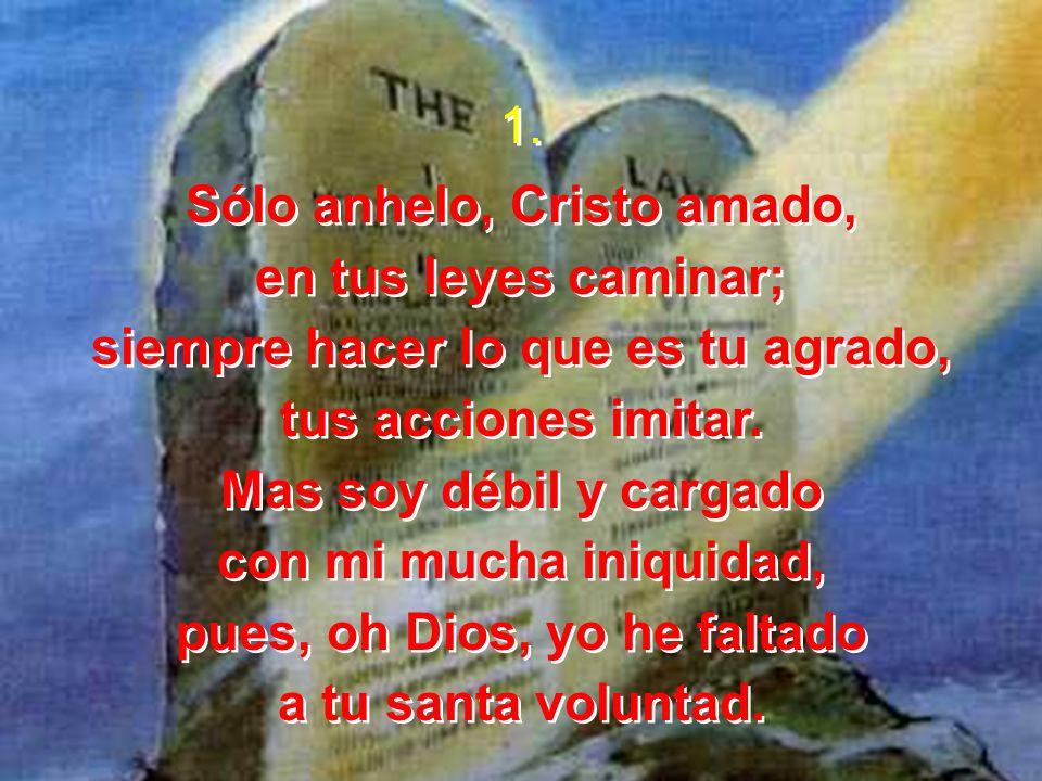 1. Sólo anhelo, Cristo amado, en tus leyes caminar; siempre hacer lo que es tu agrado, tus acciones imitar. Mas soy débil y cargado con mi mucha iniqu