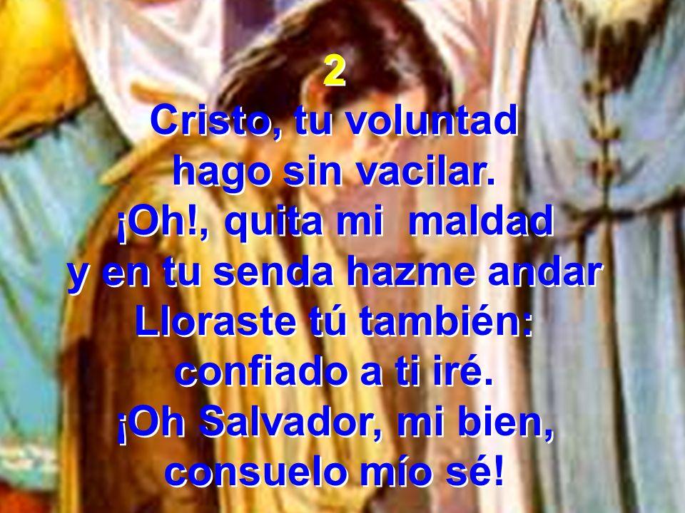 3 Cristo, tu voluntad gustoso acataré Lo haré con lealtad y en ti yo viviré Me gozo en recorrer tus sendas de bondad, tu ley obedecer, y hacer tu voluntad.