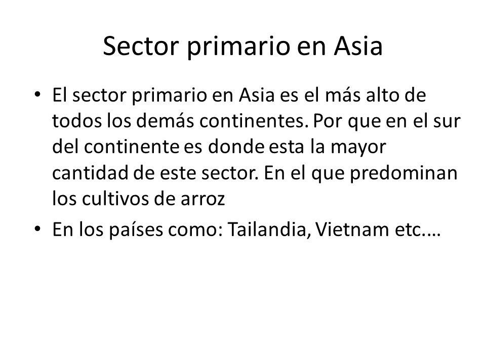 Sector primario en Asia El sector primario en Asia es el más alto de todos los demás continentes. Por que en el sur del continente es donde esta la ma