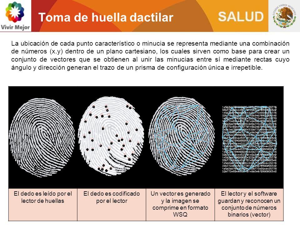 Cumplimiento de lineamientos establecidos por Registro Nacional de Población RENAPO Toma decadactilar Se registran las 10 huellas dactilares.