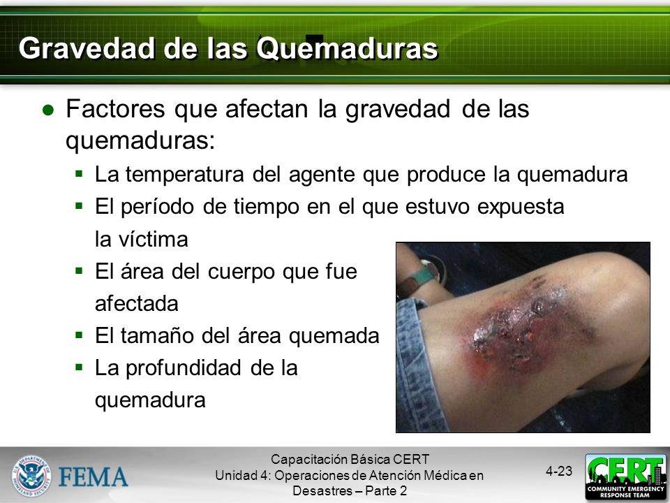 4-22 Tratamiento de Quemaduras Realizar una evaluación minuciosa Tratamiento de primeros auxilios Enfriar el área quemada Cubrir con un paño estéril p