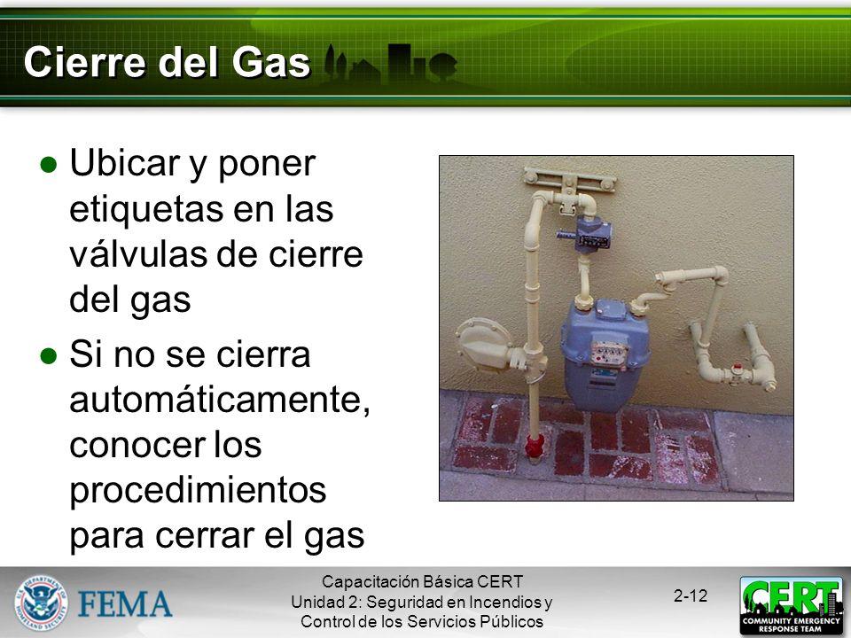 Capacitación Básica CERT Unidad 2: Seguridad en Incendios y Control de los Servicios Públicos 2-11 Estar Conscientes de los Peligros del Gas Natural I
