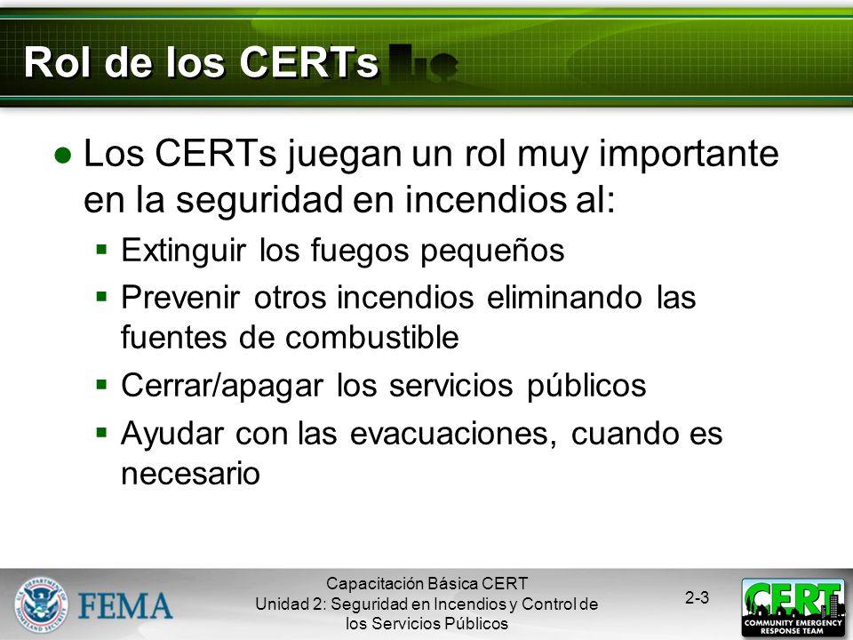 Capacitación Básica CERT Unidad 2: Seguridad en Incendios y Control de los Servicios Públicos 2-2 Temas de la Unidad Química del Fuego Peligros de inc