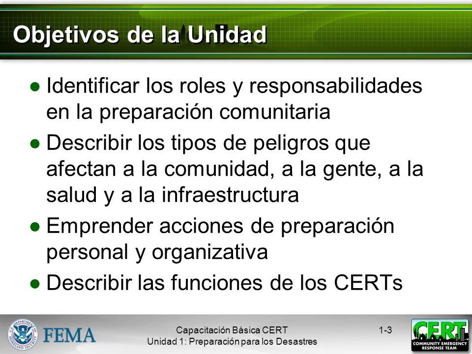 Sinopsis del Curso Seguridad en incendios Operaciones de atención médica en desastres Operaciones menores de búsqueda y rescate Organización del CERT