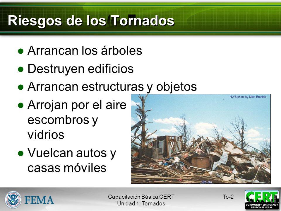 Riesgos de los Tornados Arrancan los árboles Destruyen edificios Arrancan estructuras y objetos Arrojan por el aire escombros y vidrios Vuelcan autos y casas móviles To-2 2 Capacitación Básica CERT Unidad 1: Tornados