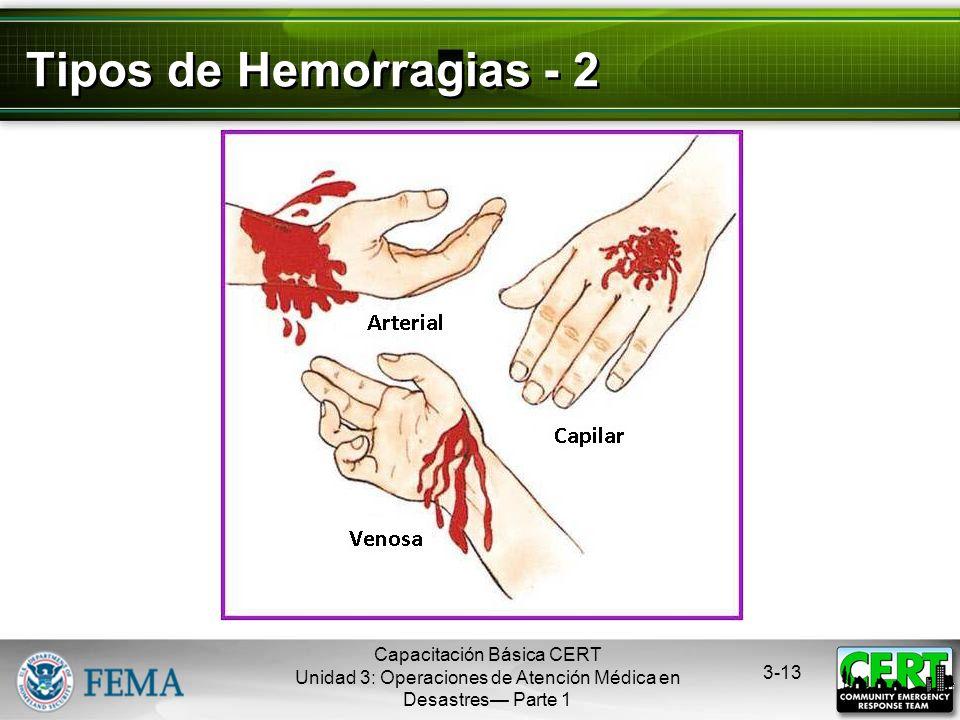 Capacitación Básica CERT Unidad 3: Operaciones de Atención Médica en Desastres Parte 1 3-12 Tipos de Hemorragias - 1 Hemorragia arterial La sangre de
