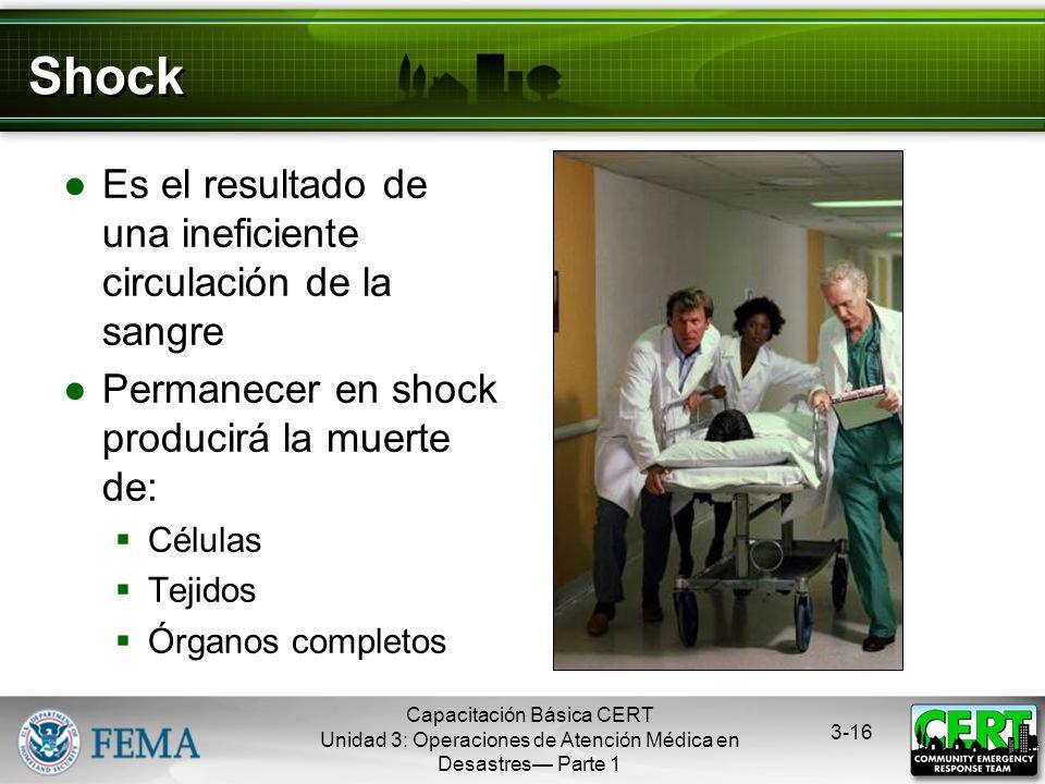 Capacitación Básica CERT Unidad 3: Operaciones de Atención Médica en Desastres Parte 1 3-15 Puntos de Presión