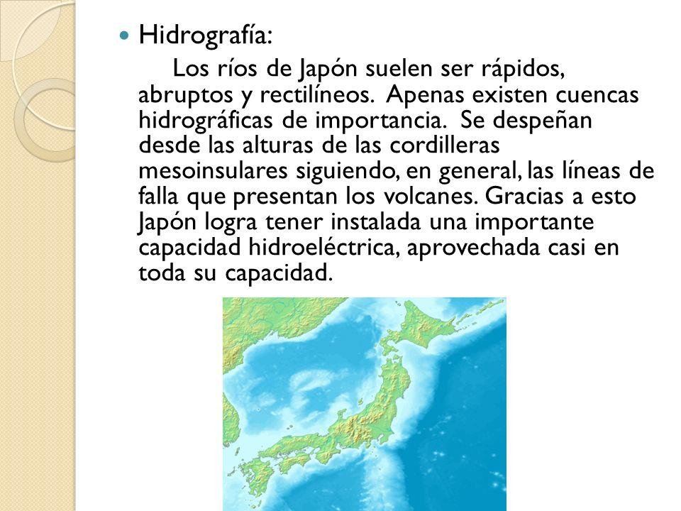 Hidrografía: Los ríos de Japón suelen ser rápidos, abruptos y rectilíneos. Apenas existen cuencas hidrográficas de importancia. Se despeñan desde las