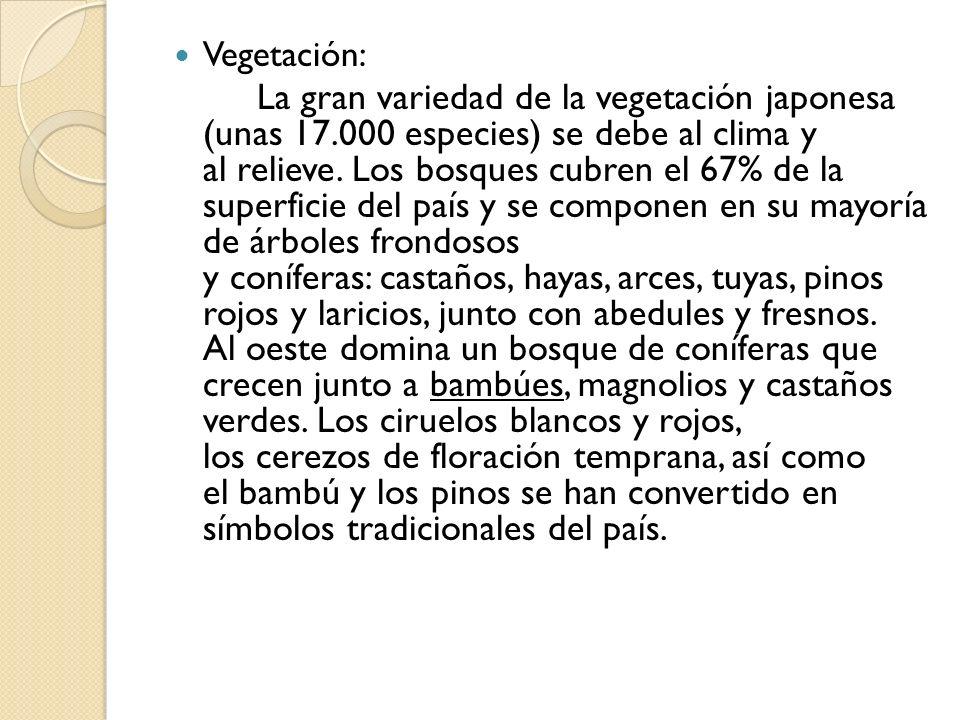 Vegetación: La gran variedad de la vegetación japonesa (unas 17.000 especies) se debe al clima y al relieve. Los bosques cubren el 67% de la superfici