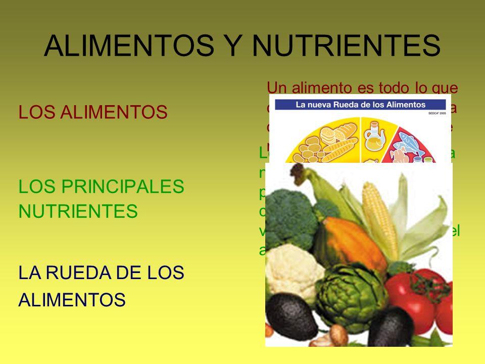 ALIMENTOS Y NUTRIENTES LOS PRINCIPALES NUTRIENTES LOS ALIMENTOS LA RUEDA DE LOS ALIMENTOS Un alimento es todo lo que comemos o bebemos para obtener lo