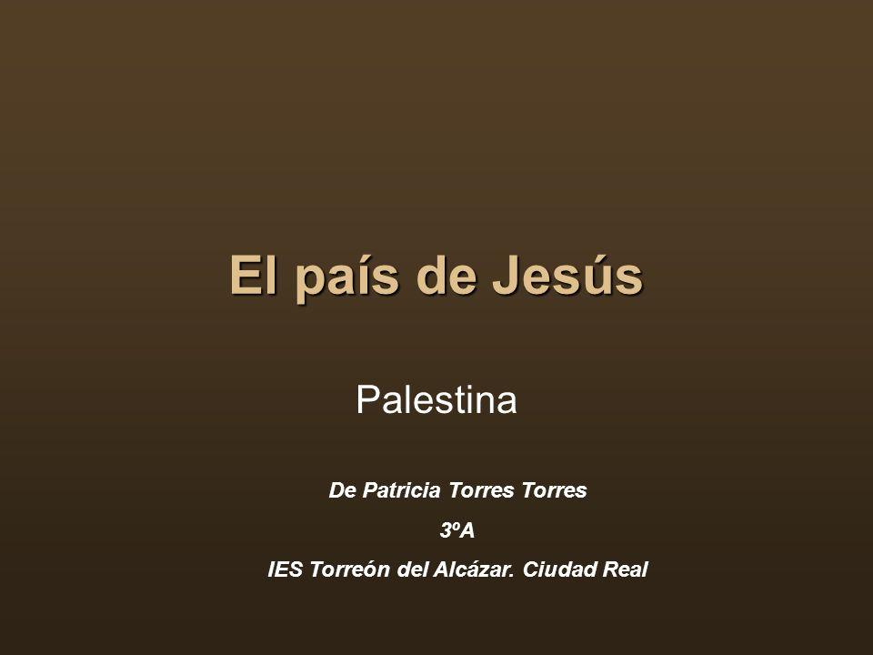 El país de Jesús Palestina De Patricia Torres Torres 3ºA IES Torreón del Alcázar. Ciudad Real