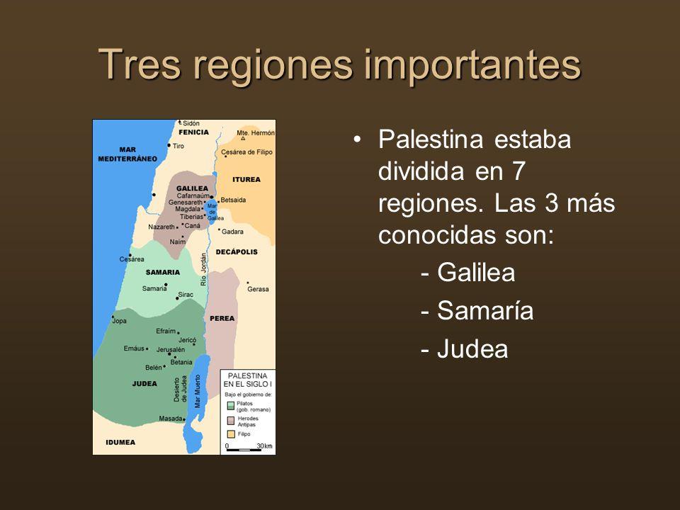 Tres regiones importantes Palestina estaba dividida en 7 regiones. Las 3 más conocidas son: - Galilea - Samaría - Judea