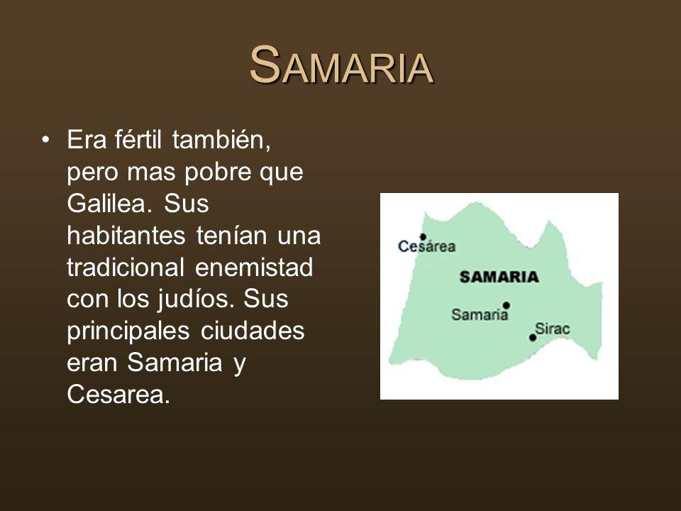 S AMARIA Era fértil también, pero mas pobre que Galilea. Sus habitantes tenían una tradicional enemistad con los judíos. Sus principales ciudades eran