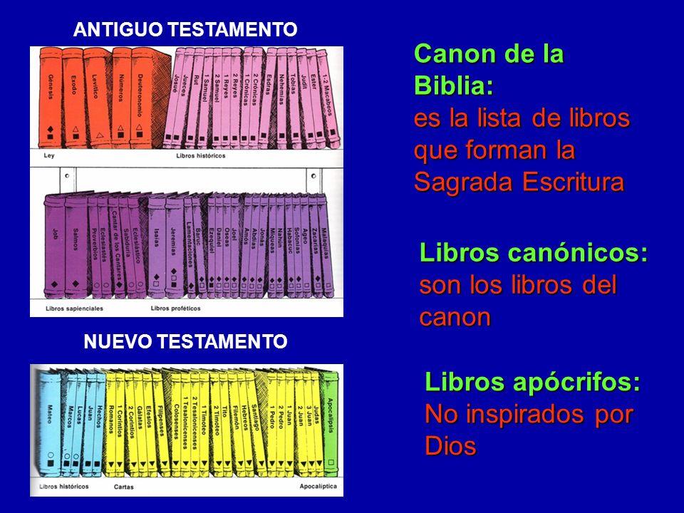 ¿QUÉ TIPO DE LIBRO ES LA BIBLIA.