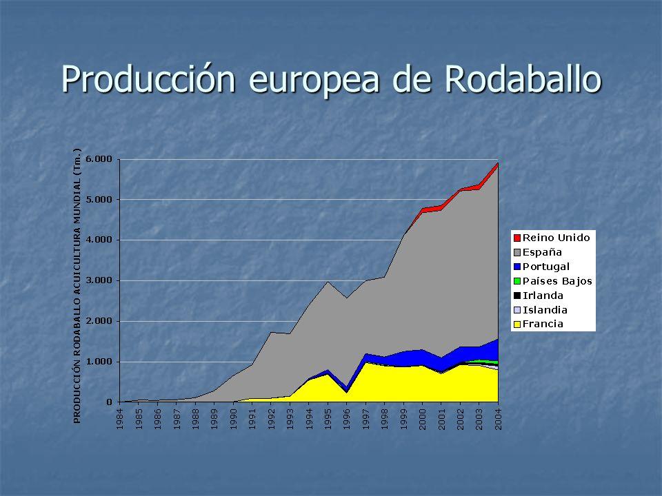 Producción europea de Rodaballo