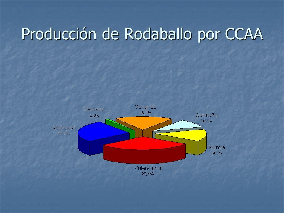 Producción de Rodaballo por CCAA