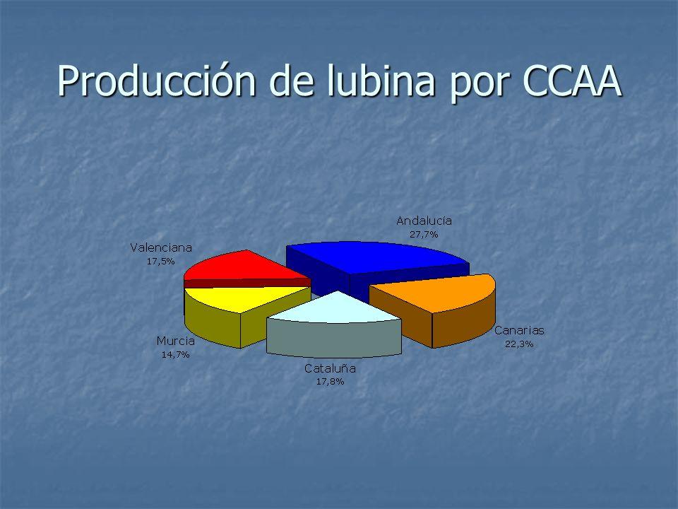 Producción de lubina por CCAA