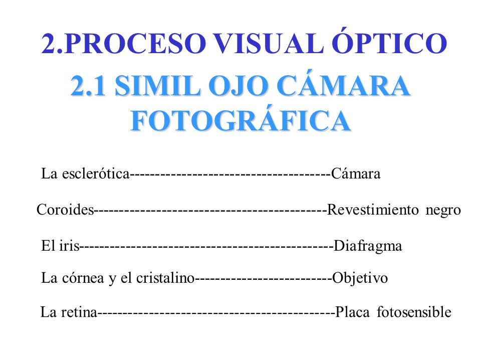 2.PROCESO VISUAL ÓPTICO 2.1 SIMIL OJO CÁMARA FOTOGRÁFICA La esclerótica--------------------------------------Cámara Coroides--------------------------