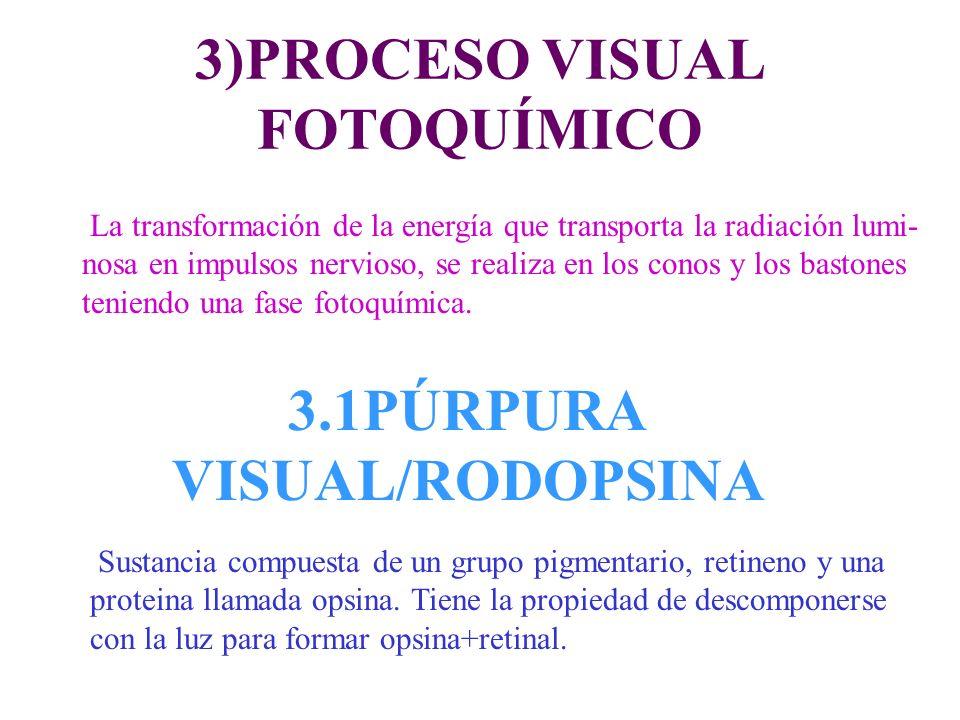 3)PROCESO VISUAL FOTOQUÍMICO 3.1PÚRPURA VISUAL/RODOPSINA La transformación de la energía que transporta la radiación lumi- nosa en impulsos nervioso,
