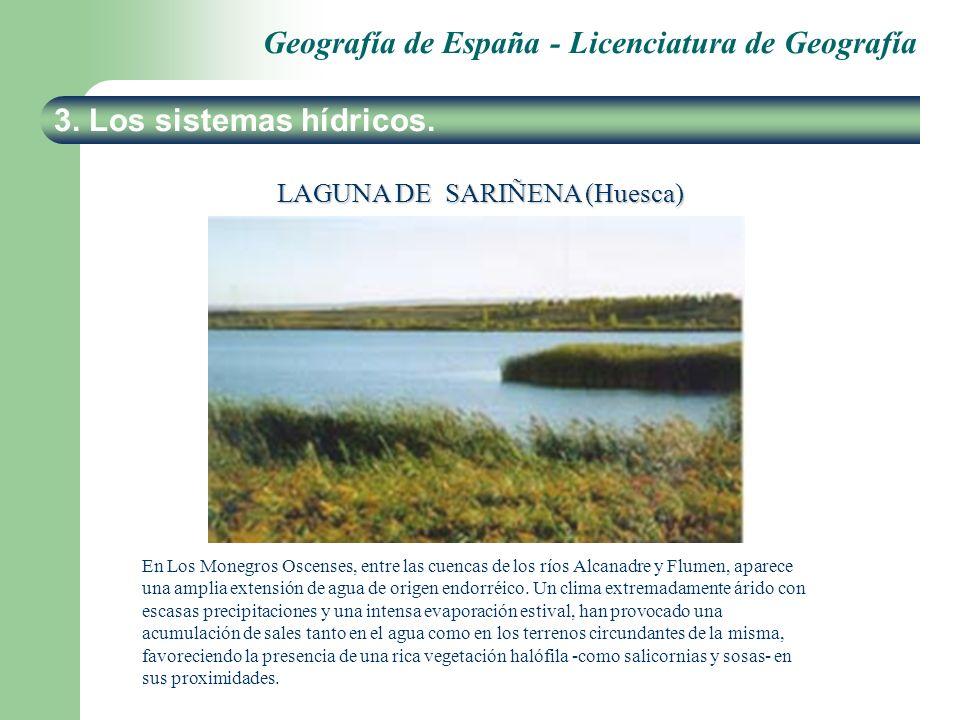Geografía de España - Licenciatura de Geografía 3. Los sistemas hídricos. LAGUNA DE SARIÑENA (Huesca) En Los Monegros Oscenses, entre las cuencas de l