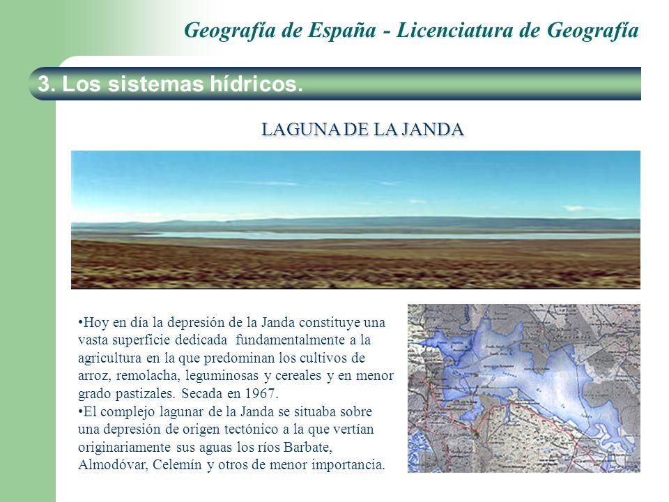 Geografía de España - Licenciatura de Geografía 3. Los sistemas hídricos. LAGUNA DE LA JANDA Hoy en día la depresión de la Janda constituye una vasta