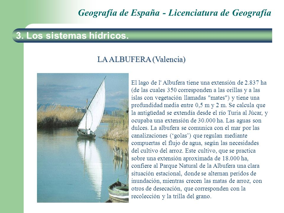 Geografía de España - Licenciatura de Geografía 3. Los sistemas hídricos. LA ALBUFERA (Valencia) El lago de l' Albufera tiene una extensión de 2.837 h