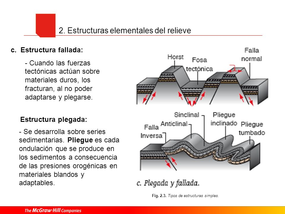 2. Estructuras elementales del relieve Fig. 2.3. Tipos de estructuras simples. Estructura plegada: - Se desarrolla sobre series sedimentarias. Pliegue