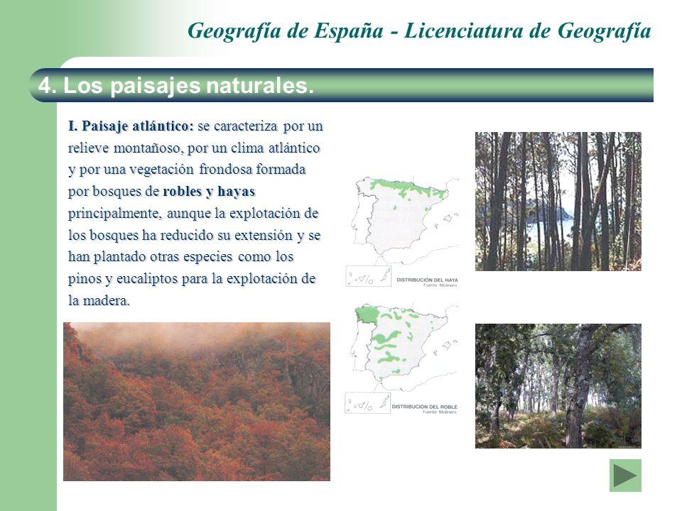 Geografía de España - Licenciatura de Geografía 4. Los paisajes naturales. I. Paisaje atlántico: se caracteriza por un relieve montañoso, por un clima