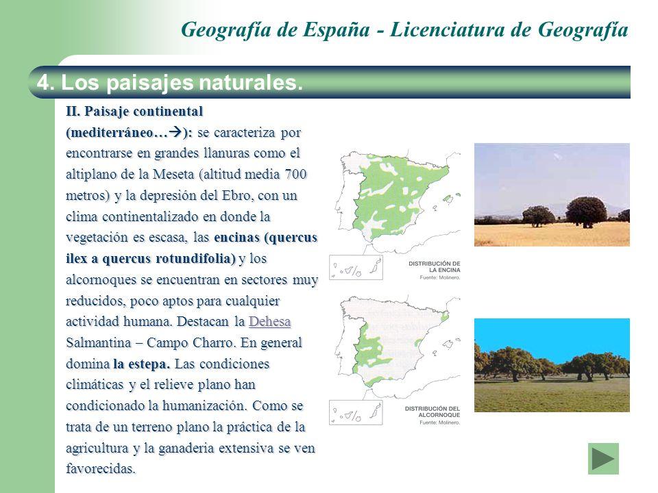 Geografía de España - Licenciatura de Geografía II. Paisaje continental (mediterráneo… ): se caracteriza por encontrarse en grandes llanuras como el a