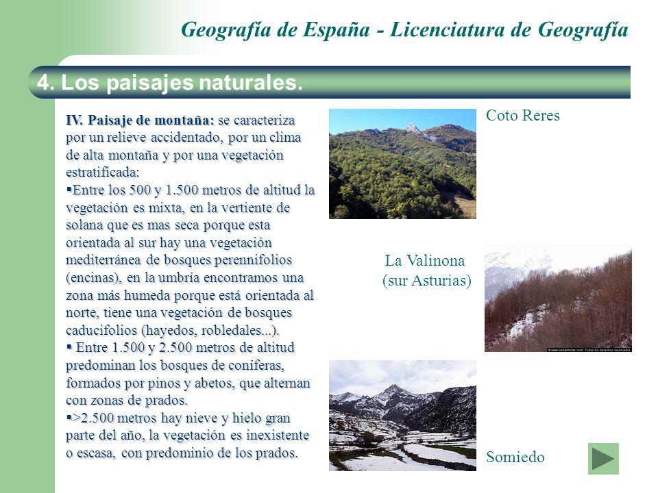 Geografía de España - Licenciatura de Geografía 4. Los paisajes naturales. IV. Paisaje de montaña: se caracteriza por un relieve accidentado, por un c